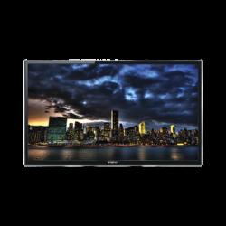 """Monitor Profesional FULL HD LED de 32"""" ideal para Videovigilancia / Uso 24/7 / Resolución 1920x1080 / Entradas de video HDMI, V"""